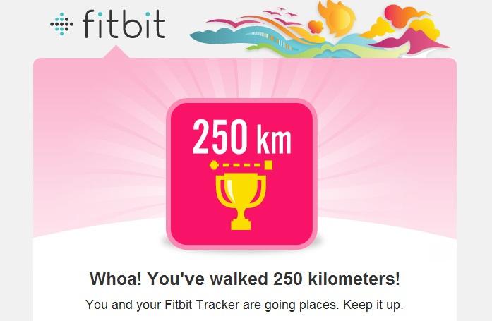 250 km Fitbit Flex